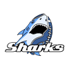 alicante-sharks